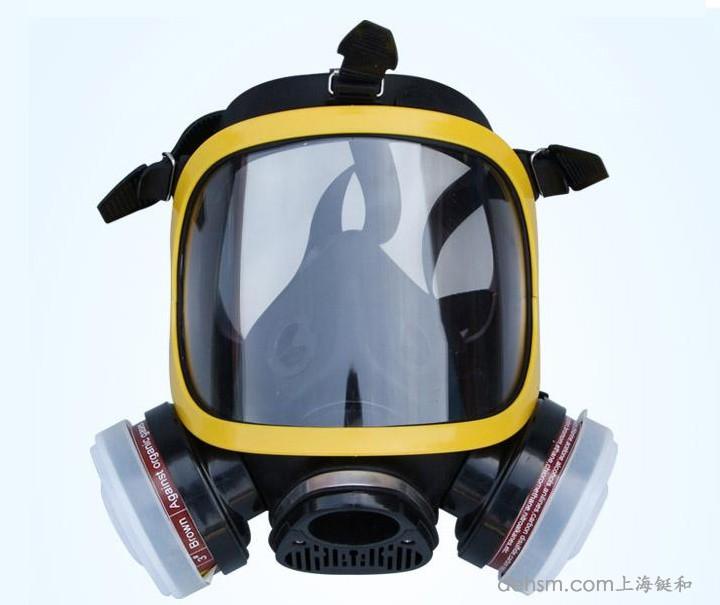 DH20154全面罩防毒面具正面图片