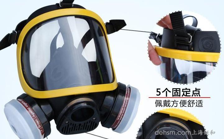 DH20154全面罩防毒面具细节图1