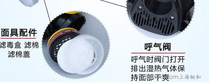 DH20154全面罩防毒面具细节图2