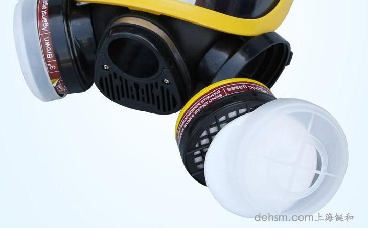 DH20154全面罩防毒面具图片3