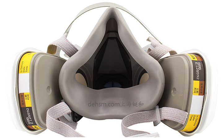 3M6200+6003防有机及酸性气体防毒面具图片-反面