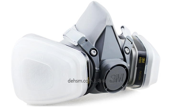 3M6200+6005防有机气体及甲醛防毒面具图片-正面