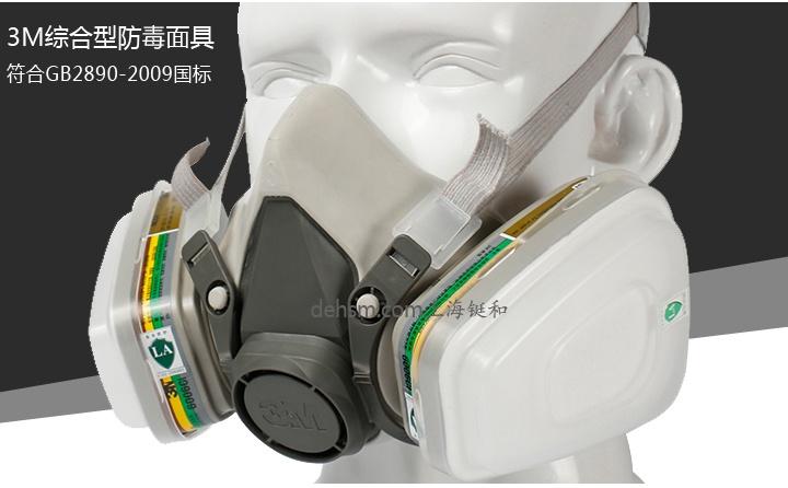 3M6200+6006防多种气体防毒面具